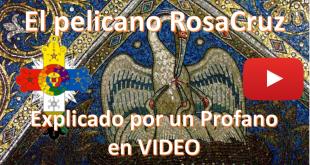 Pelicano Rosacruz